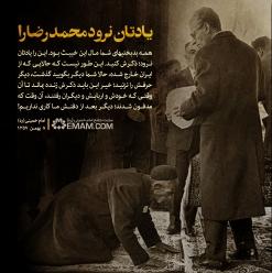 یادتان نرود محمد رضا را